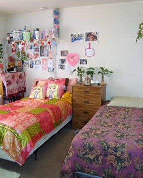 Cost $650 Per Bed
